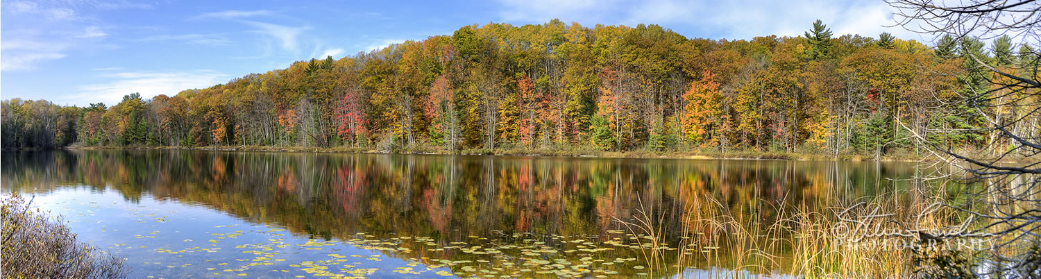TRE239 Ransom Lake Autumn pano