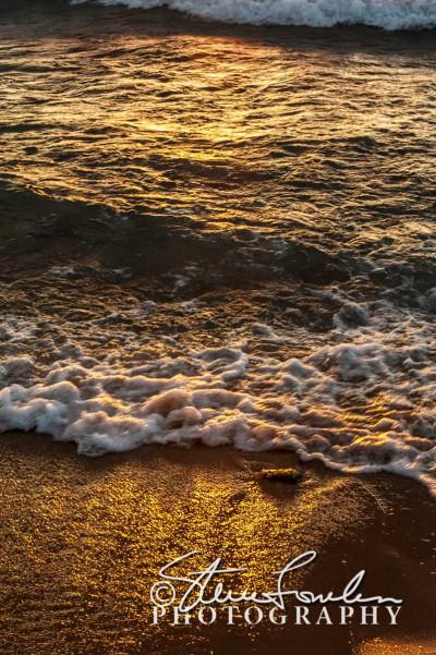 BD272-Golden-Waves