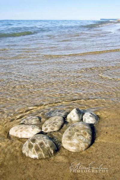 BD001-A-Gathering-of-Petoskey-Stones.jpg
