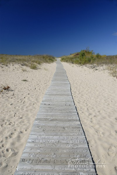BD030-Elberta-Beach-Path-1.jpg