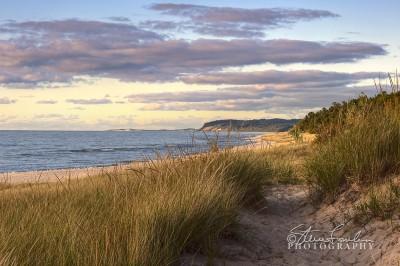 BD061-Portage-Beach-Looking-North.jpg