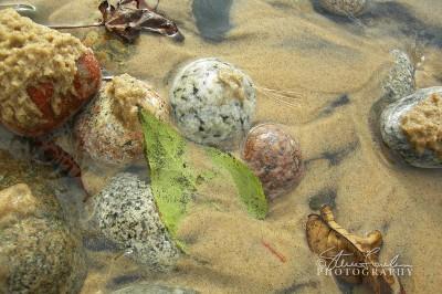 BD068-Superior-Stones-Leaf.jpg