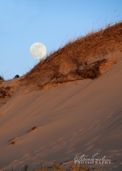 BD127-Dune-Moonrise-1.jpg
