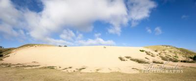 BD160-Dune-Climb-pano.jpg