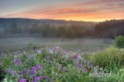 FLR087-Sunset-Sunrise-3-2.jpg