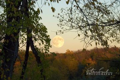SUN037-Moonrise-10-25-07-1.jpg