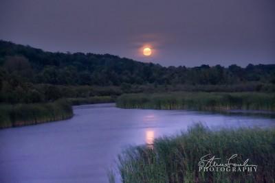 SUN041-Moonrise-over-Betsie-Marsh.jpg