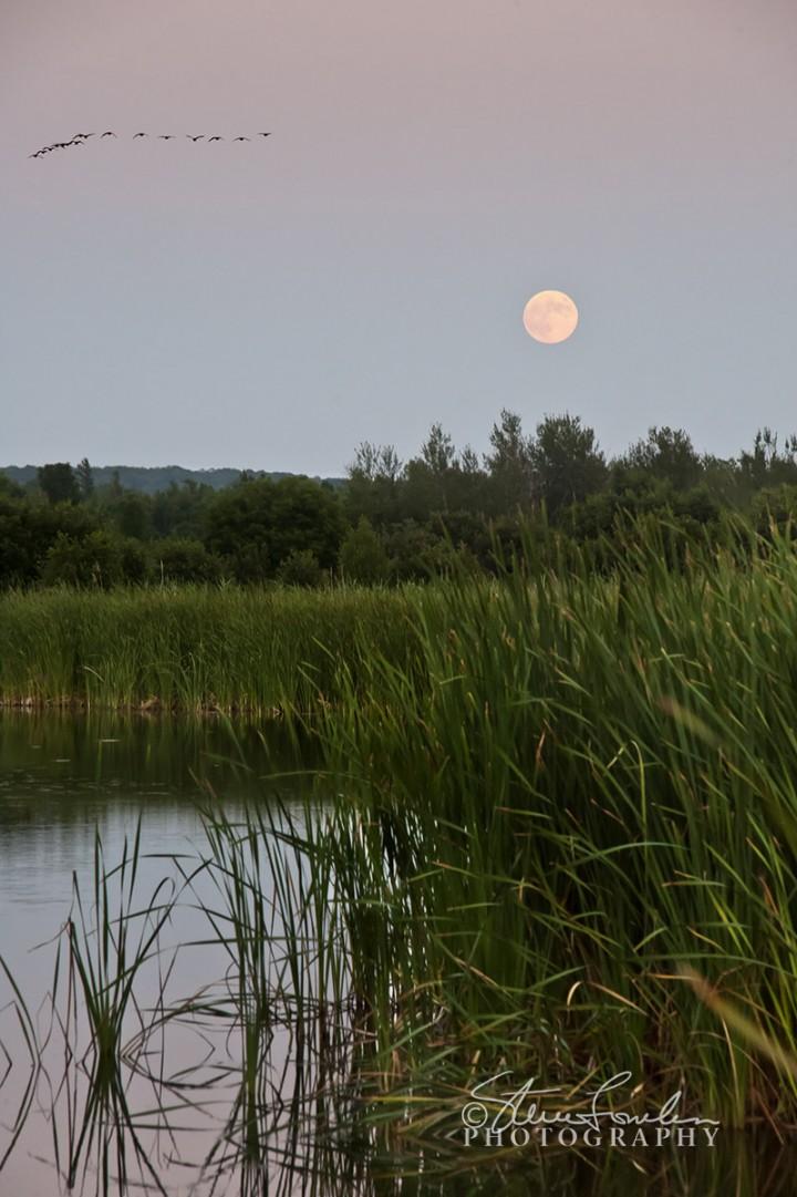 SUN097-Moonrise-July-2010-2.jpg