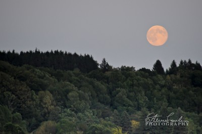 SUN120-Elberta-Moonrise.jpg