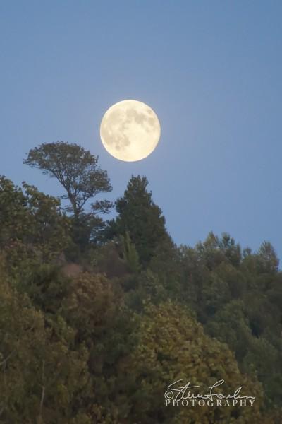 SUN126-September-Moonrise-Vert.jpg