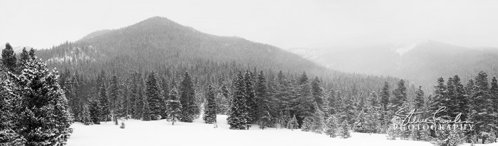 Snowfall-In-The-Rockies.jpg