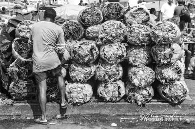 Wood-Bundles-Belem-Brazil.jpg