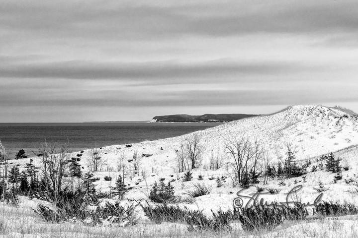 BD180-Sleeping-Bear-Winter-#1-B-W-watermarked