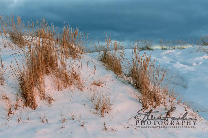 BD226-Winter-Dunegrass-At-Sunset-