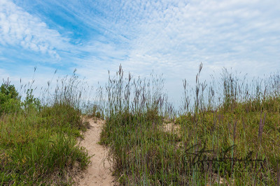 BD285-Morning-Beach-Path-