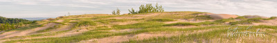 BD331-Late-Afternoon-Dune-Pano-#1-