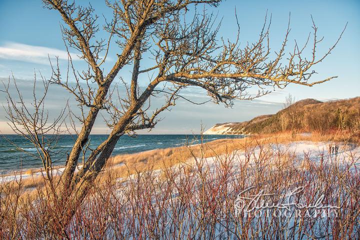 BD349-Aral-Beach-Winter-Glow-