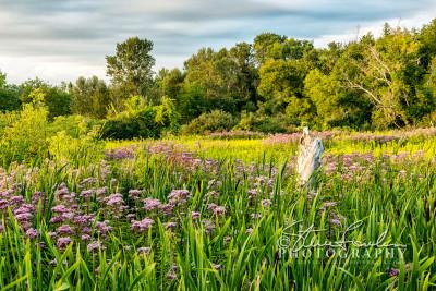 FLR144-Natural-Garden-#2-watermarked