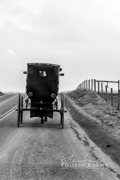 MSC312-Amish-Buggy-#1-watermarked