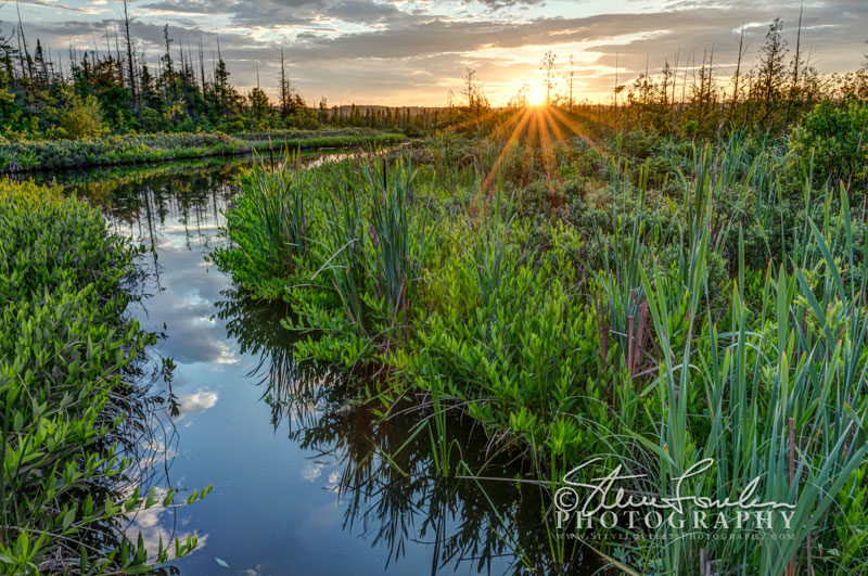SUN215-Platte-River-Marsh-Sunrise